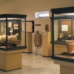 Musei di Rimini e d'intorni